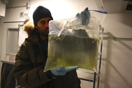 Craig holds a bag containing water from a melted ice core that he drilled a few days ago. The water looks murky due to the presence of algae.